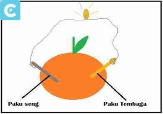 Test Listrik pada buah