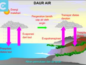 Daur Biogeokimia 1